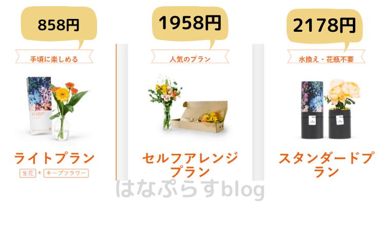 花の定期便 プレゼント